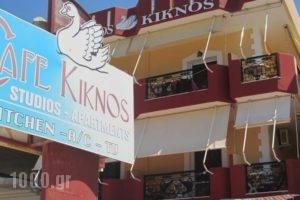 Kiknos Studios_accommodation_in_Hotel_Crete_Heraklion_Tymbaki