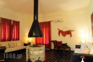 Guesthouse Amanit'S Caesarea_best deals_Hotel_Thessaly_Larisa_Agia