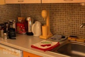 Enallio Apartments_best deals_Apartment_Peloponesse_Argolida_Nafplio