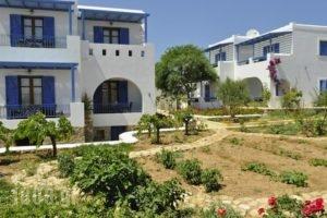 Niriides_best deals_Hotel_Cyclades Islands_Koufonisia_Koufonisi Chora