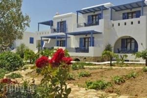 Niriides_holidays_in_Hotel_Cyclades Islands_Koufonisia_Koufonisi Chora