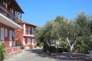 Villa Levante_holidays_in_Villa_Ionian Islands_Zakinthos_Zakinthos Rest Areas