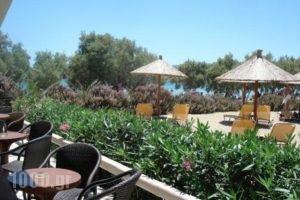 Fanari Beach_lowest prices_in_Hotel_Cyclades Islands_Sifnos_Faros