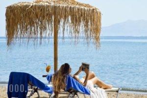 Makis Inn Resort_best prices_in_Hotel_Peloponesse_Argolida_Ermioni