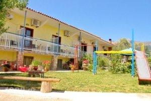 Studios Olga_accommodation_in_Hotel_Aegean Islands_Thasos_Thasos Rest Areas