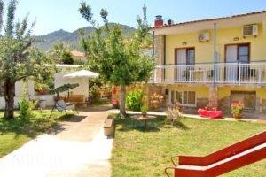 Studios Olga_best deals_Hotel_Aegean Islands_Thasos_Thasos Rest Areas