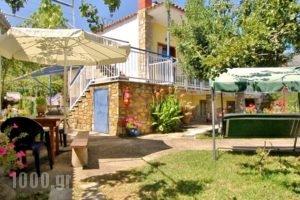 Studios Olga_travel_packages_in_Aegean Islands_Thasos_Thasos Rest Areas