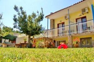 Studios Olga_lowest prices_in_Hotel_Aegean Islands_Thasos_Thasos Rest Areas