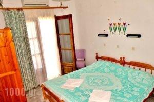 Studios Olga_holidays_in_Hotel_Aegean Islands_Thasos_Thasos Rest Areas