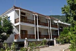 Mira Mare_best deals_Hotel_Sporades Islands_Skopelos_Skopelos Chora