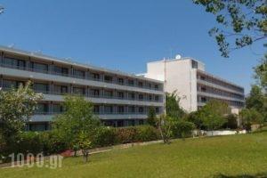 Mediterranee_best prices_in_Hotel_Ionian Islands_Kefalonia_Kefalonia'st Areas