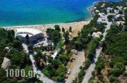 Tosca Beach Bungalows in  Loutra Eleftheron , Kavala, Macedonia