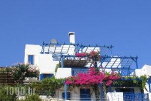 Nymphes Luxury Apartments_best prices_in_Apartment_Crete_Heraklion_Ammoudara