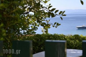 Kolios House_holidays_in_Hotel_Sporades Islands_Skiathos_Skiathos Chora
