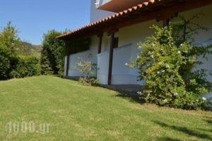 Kolios House_best prices_in_Hotel_Sporades Islands_Skiathos_Skiathos Chora