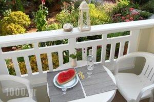 Seagull Studios_best prices_in_Hotel_Crete_Heraklion_Malia