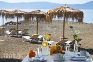 Makis Inn Resort_travel_packages_in_Peloponesse_Argolida_Ermioni