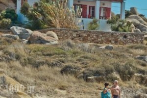 Ydreos Studios & Apartments_lowest prices_in_Apartment_Cyclades Islands_Naxos_Mikri Vigla