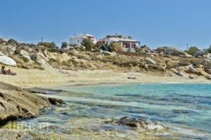 Ydreos Studios & Apartments_best deals_Apartment_Cyclades Islands_Naxos_Mikri Vigla