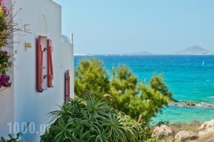 Ydreos Studios & Apartments_best prices_in_Apartment_Cyclades Islands_Naxos_Mikri Vigla
