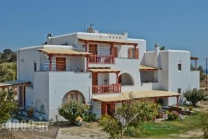 Ydreos Studios & Apartments_holidays_in_Apartment_Cyclades Islands_Naxos_Mikri Vigla