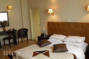 Hagiati Anastasiou Hotel & Spa_accommodation_in_Hotel_Macedonia_Imathia_Naousa