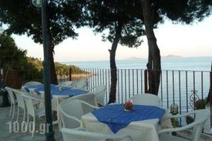 Milia Bay Hotel Apartments_holidays_in_Apartment_Sporades Islands_Skopelos_Skopelos Chora
