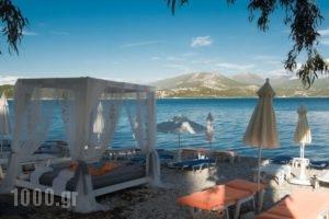 Mavra Studios_accommodation_in_Hotel_Ionian Islands_Lefkada_Vasiliki