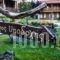 Vitina House_lowest prices_in_Hotel_Peloponesse_Arcadia_Stemnitsa
