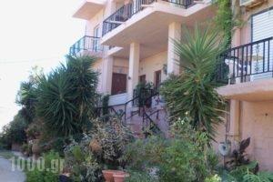 Nikolas Apartments_accommodation_in_Apartment_Crete_Chania_Stalos