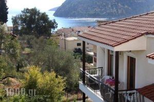 Oasis Apartments_holidays_in_Apartment_Peloponesse_Argolida_Tolo