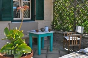 To The Garden_lowest prices_in_Hotel_Cyclades Islands_Paros_Alyki