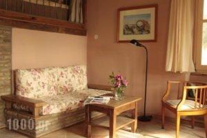 To The Garden_holidays_in_Hotel_Cyclades Islands_Paros_Alyki