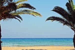 Lepitsa Sunset_lowest prices_in_Hotel_Peloponesse_Arcadia_Leonidio