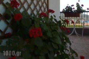 El Capitan_lowest prices_in_Hotel_Macedonia_Halkidiki_Toroni