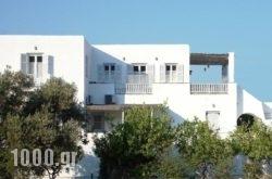 Margarita Studios in Platys Gialos, Sifnos, Cyclades Islands