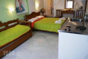 Mike's Studios_lowest prices_in_Hotel_Cyclades Islands_Naxos_Naxos Chora