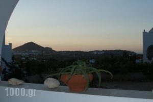 View To The Blue_holidays_in_Hotel_Cyclades Islands_Naxos_Agia Anna