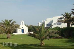 Astir Of Paros_holidays_in_Hotel_Cyclades Islands_Paros_Paros Rest Areas