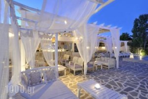 Narges_accommodation_in_Hotel_Cyclades Islands_Paros_Paros Chora