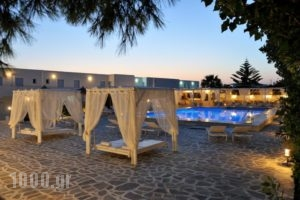Narges_best prices_in_Hotel_Cyclades Islands_Paros_Paros Chora