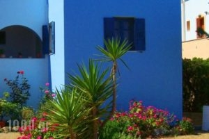 View To The Blue_lowest prices_in_Hotel_Cyclades Islands_Naxos_Agia Anna