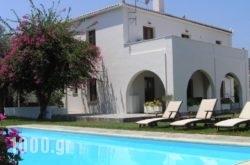 Villa Irini in Spetses Chora, Spetses, Piraeus Islands - Trizonia