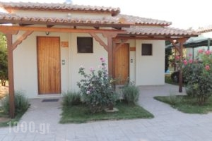 Camping Bungalows Erodios_accommodation_in_Hotel_Thessaly_Magnesia_Pilio Area