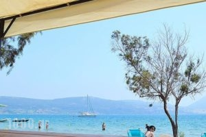 Camping Bungalows Erodios_holidays_in_Hotel_Thessaly_Magnesia_Pilio Area