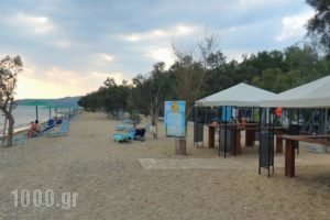 Camping Bungalows Erodios_best prices_in_Hotel_Thessaly_Magnesia_Pilio Area