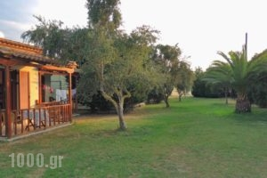 Camping Bungalows Erodios_lowest prices_in_Hotel_Thessaly_Magnesia_Pilio Area