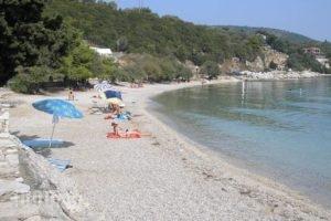 Nikoleta Studios_holidays_in_Hotel_Ionian Islands_Lefkada_Lefkada Chora