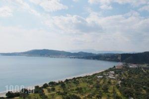 Elaionas Studios_best prices_in_Hotel_Peloponesse_Lakonia_Skoutari