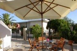 Studios Akrogiali in Pilio Area, Magnesia, Thessaly